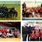 21-04-2019: #coppapugliavolley - Castellaneta, Turi, Melendugno e Bari le regine di Coppa nel sabato pre pasquale di Coppa Puglia